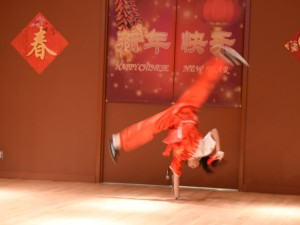 Wushu 1
